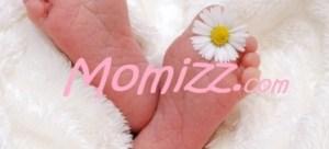 Momizz